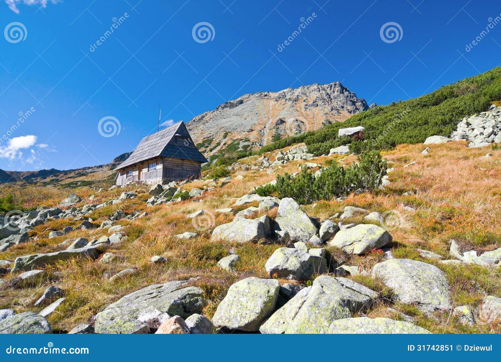 在5个湖谷的夏天在高Tatra山