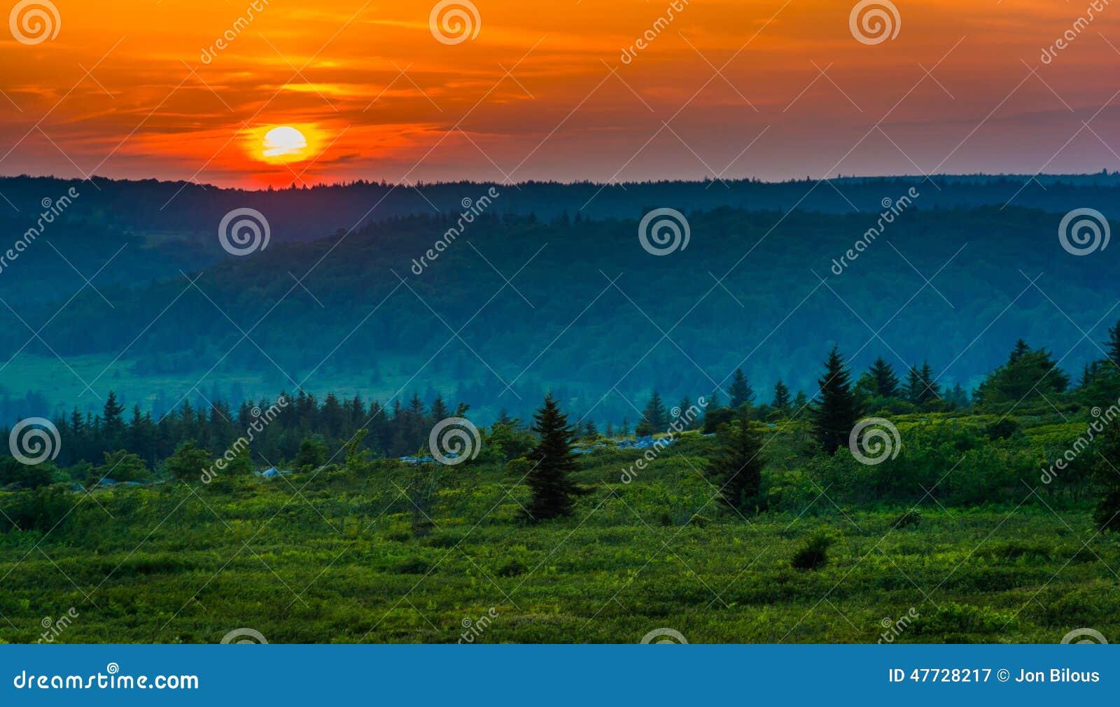 在移动式摄影车的日落铺草皮原野, Monongahela国家森林,