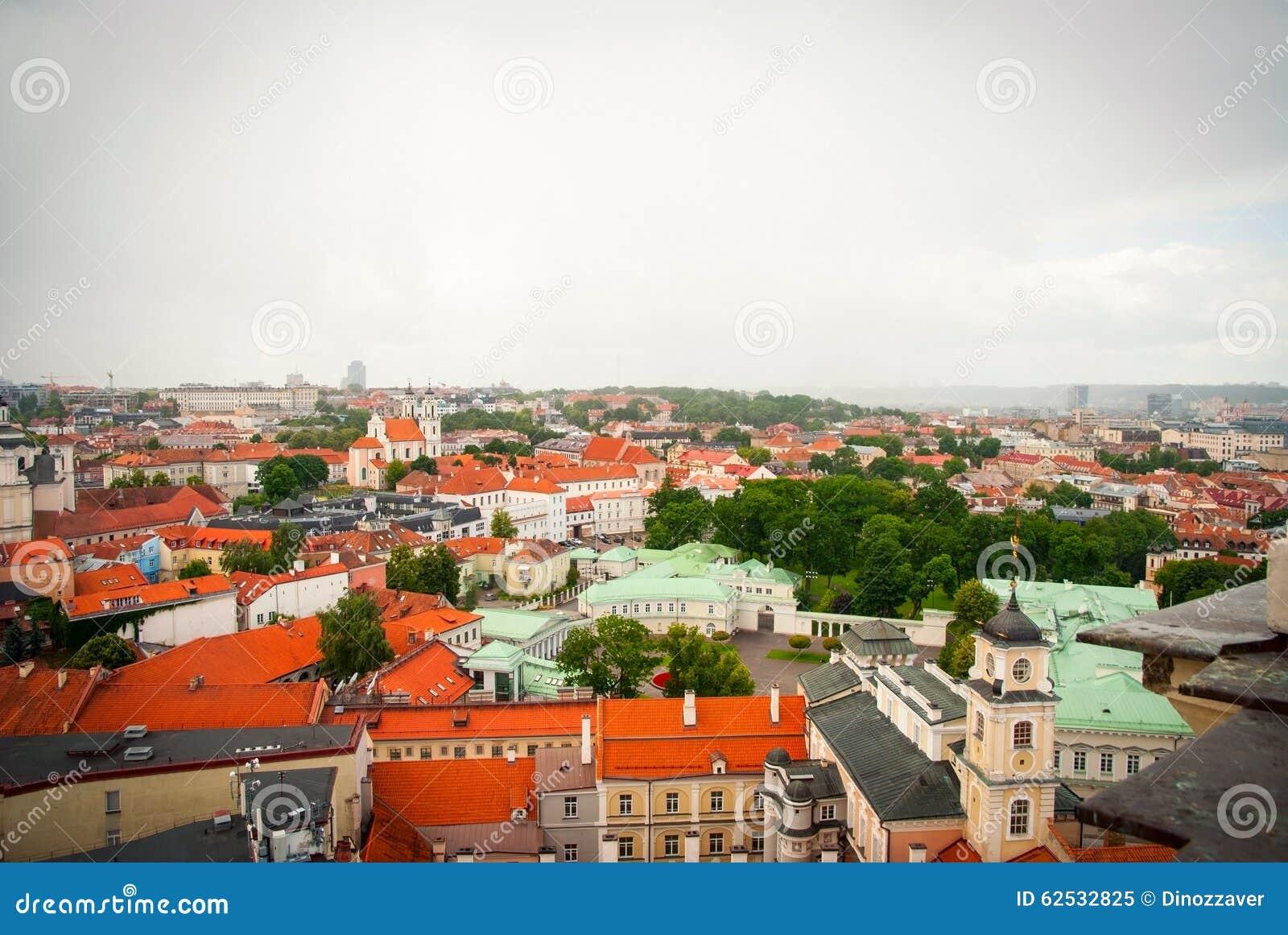在维尔纽斯,立陶宛的首都屋顶的看法