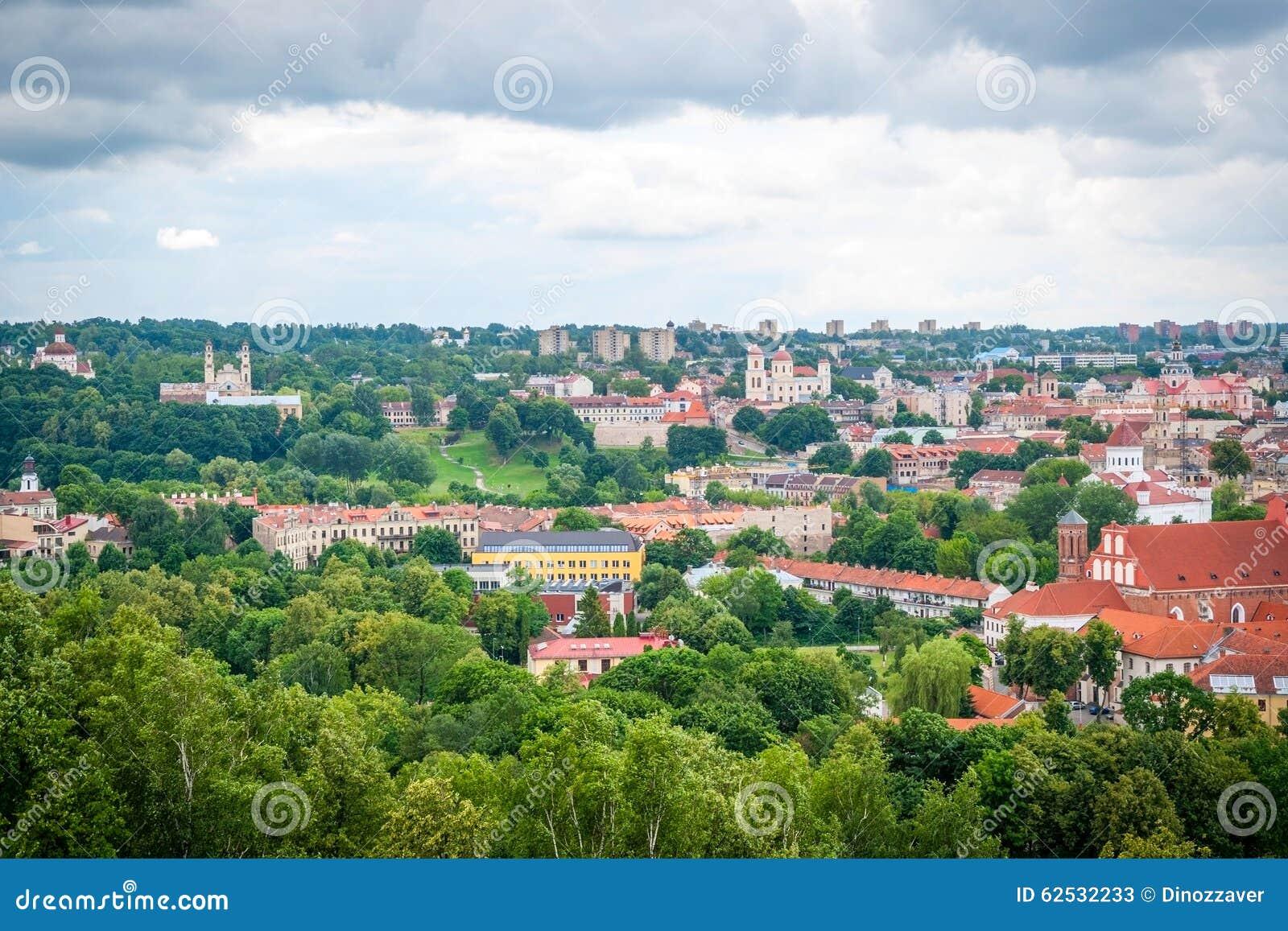 在维尔纽斯,立陶宛的首都的看法