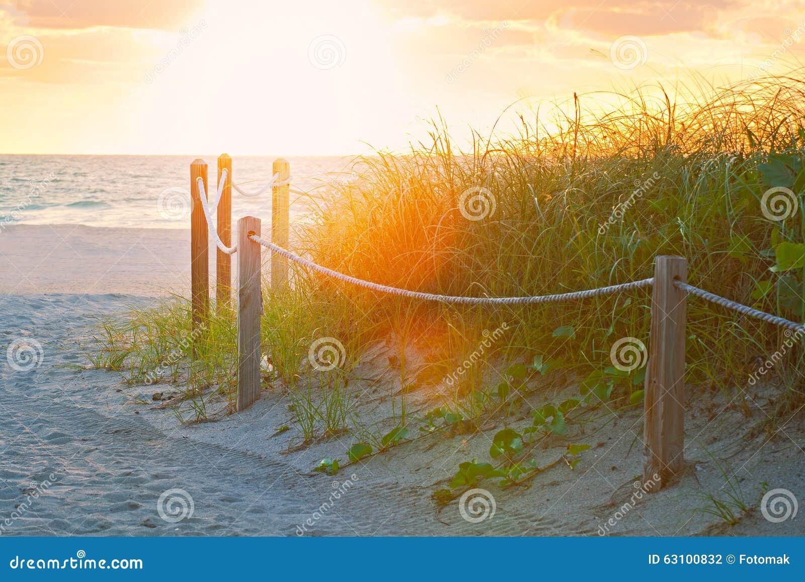 在去海洋的沙子的道路在迈阿密海滩