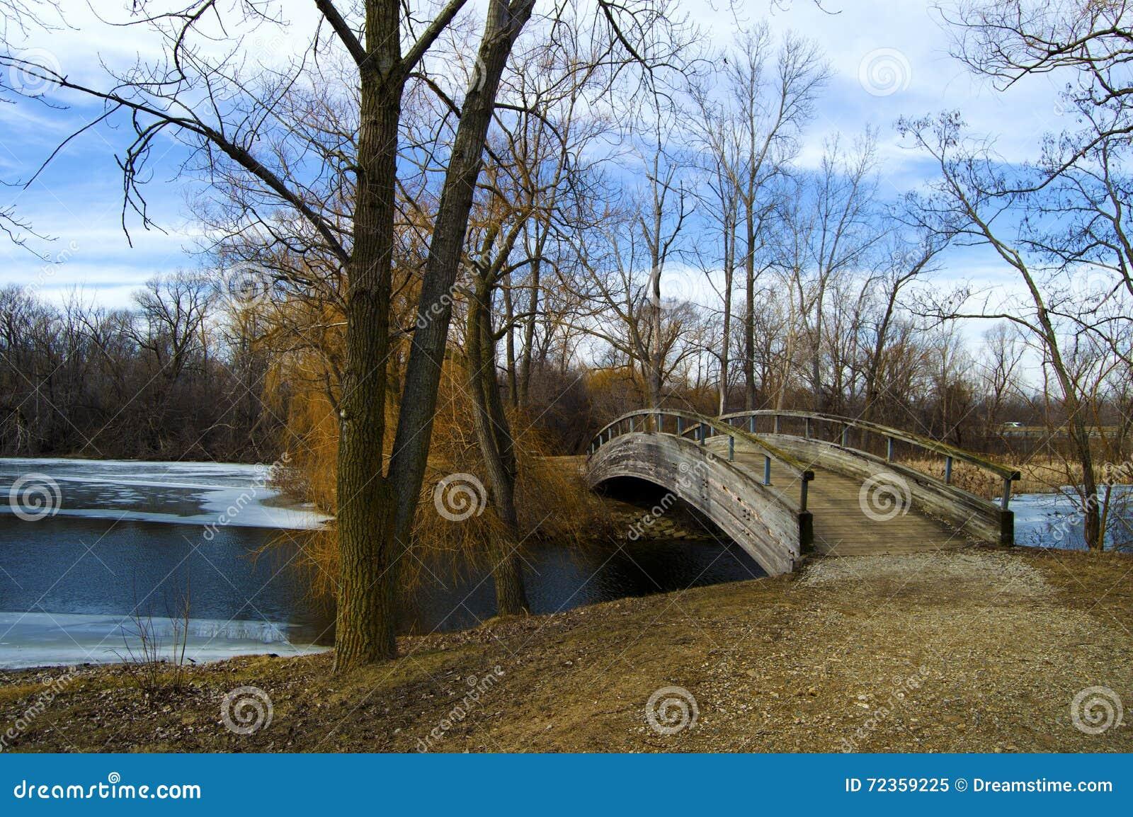在水的桥梁