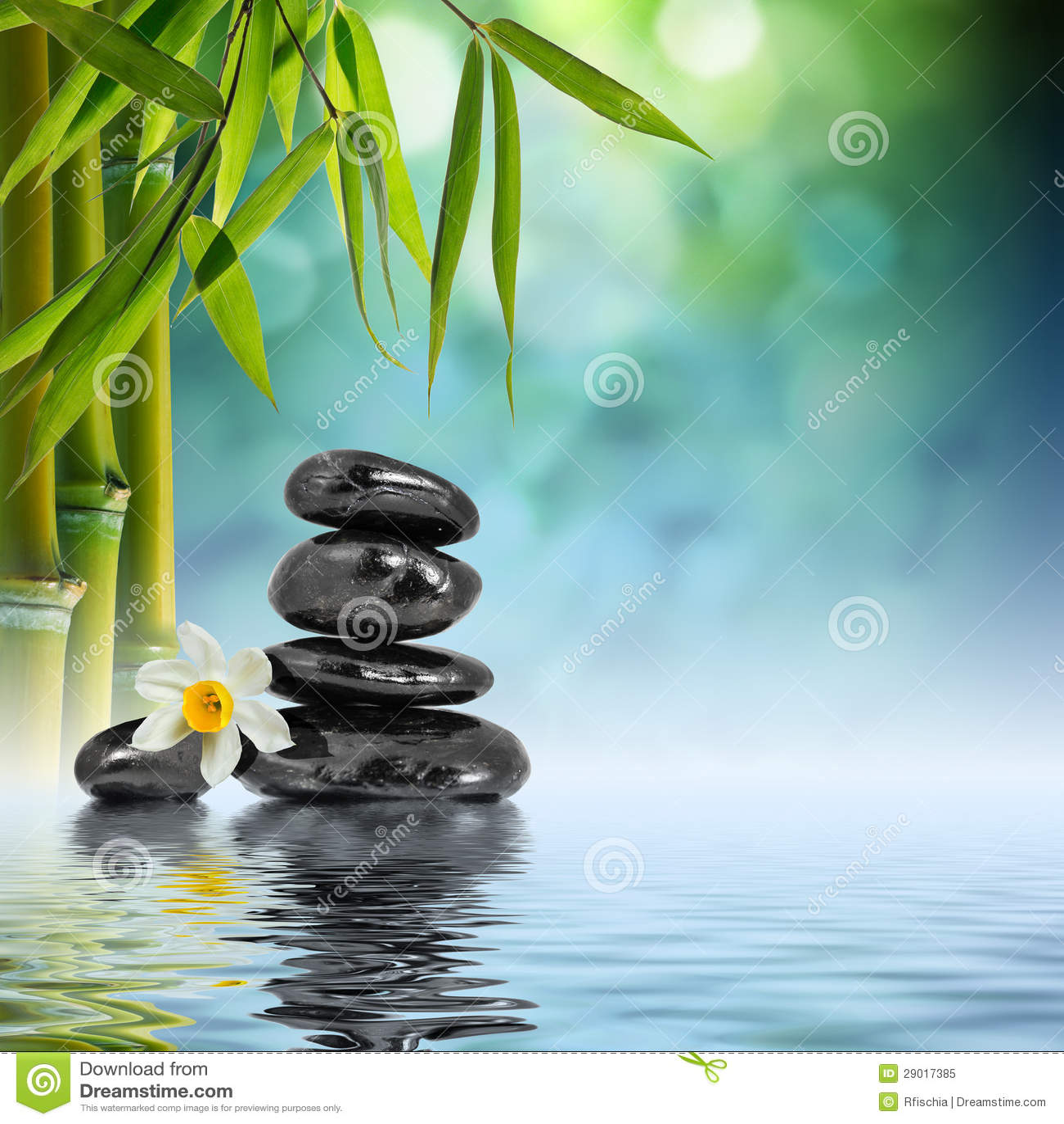 在水的石头和竹子