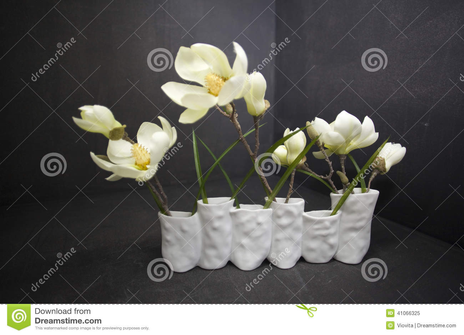 在黑色隔绝的花瓶美丽的木兰花