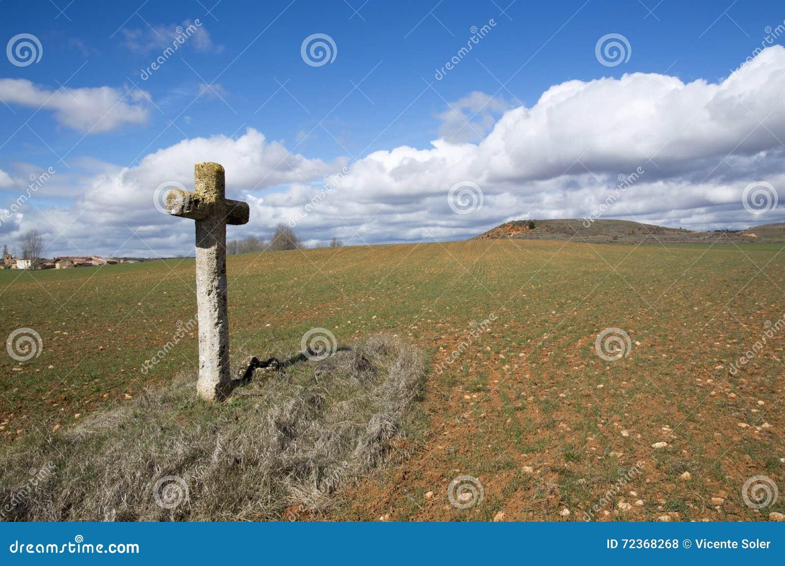 在索里亚的领域的十字架