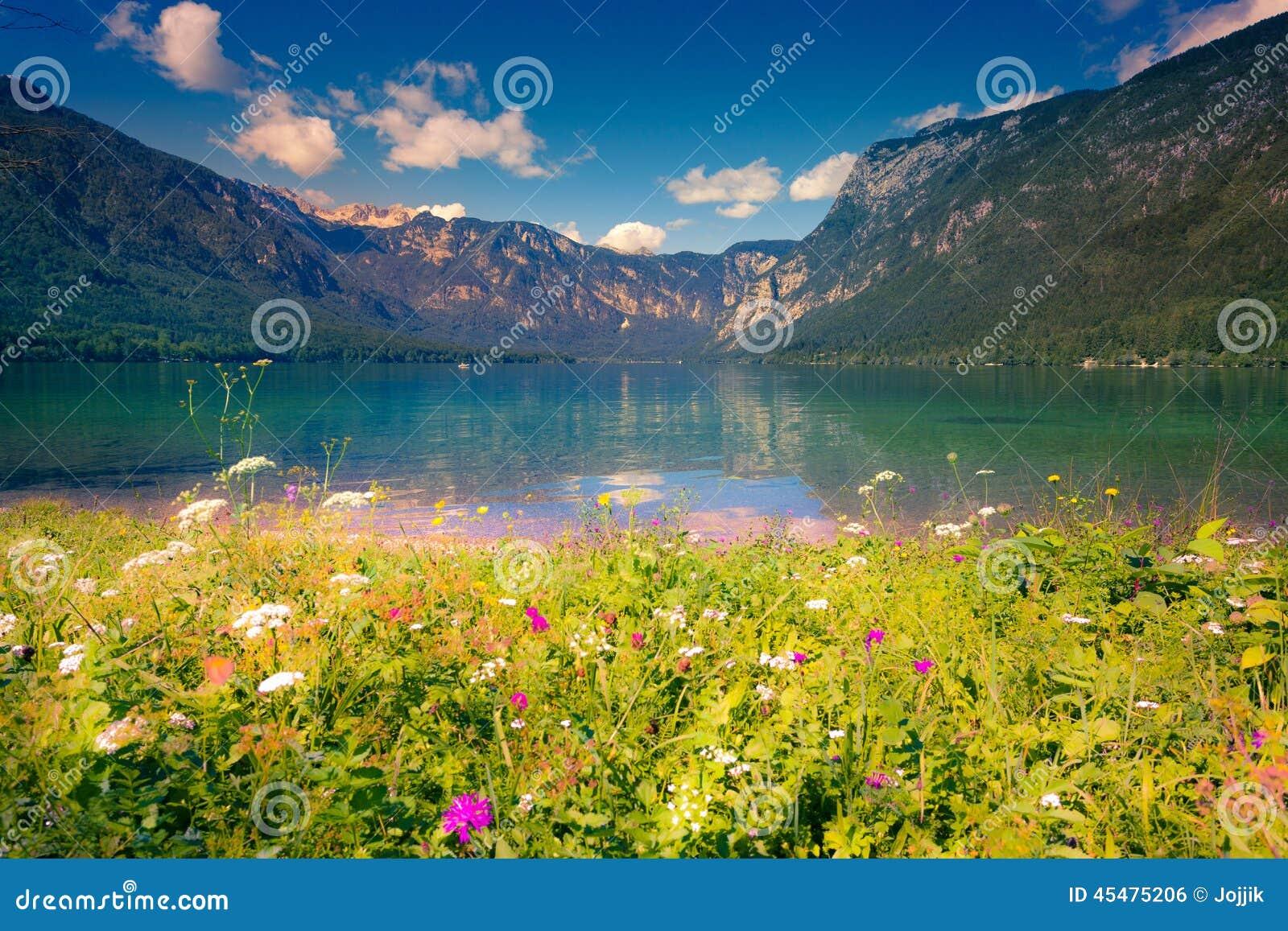 在Bohinj湖的五颜六色的夏天早晨在特里格拉夫峰全国p
