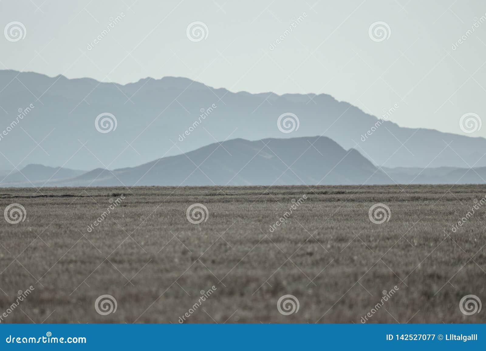在Charyn峡谷附近的风景