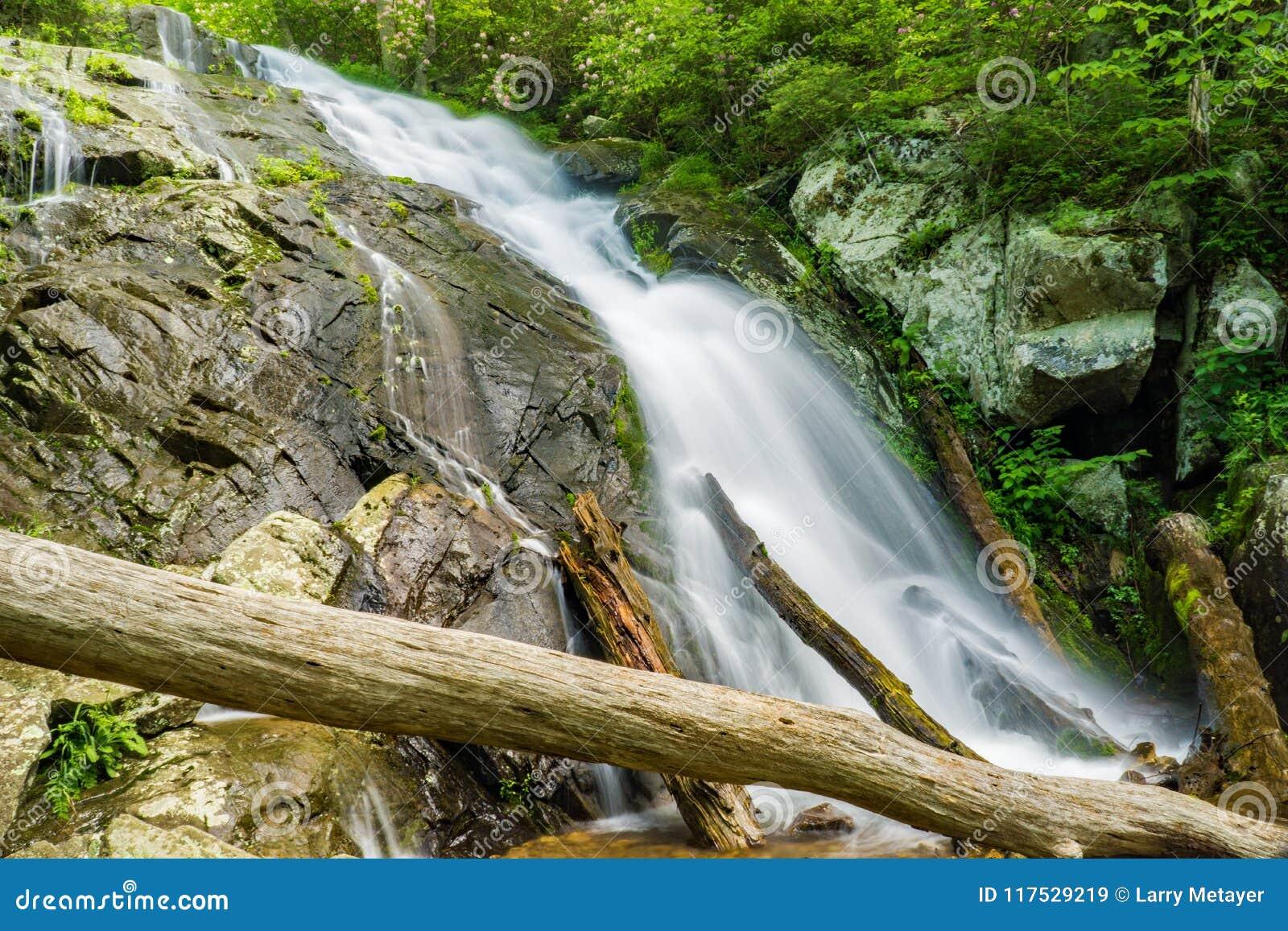 在Fallingwater小河的落下的瀑布