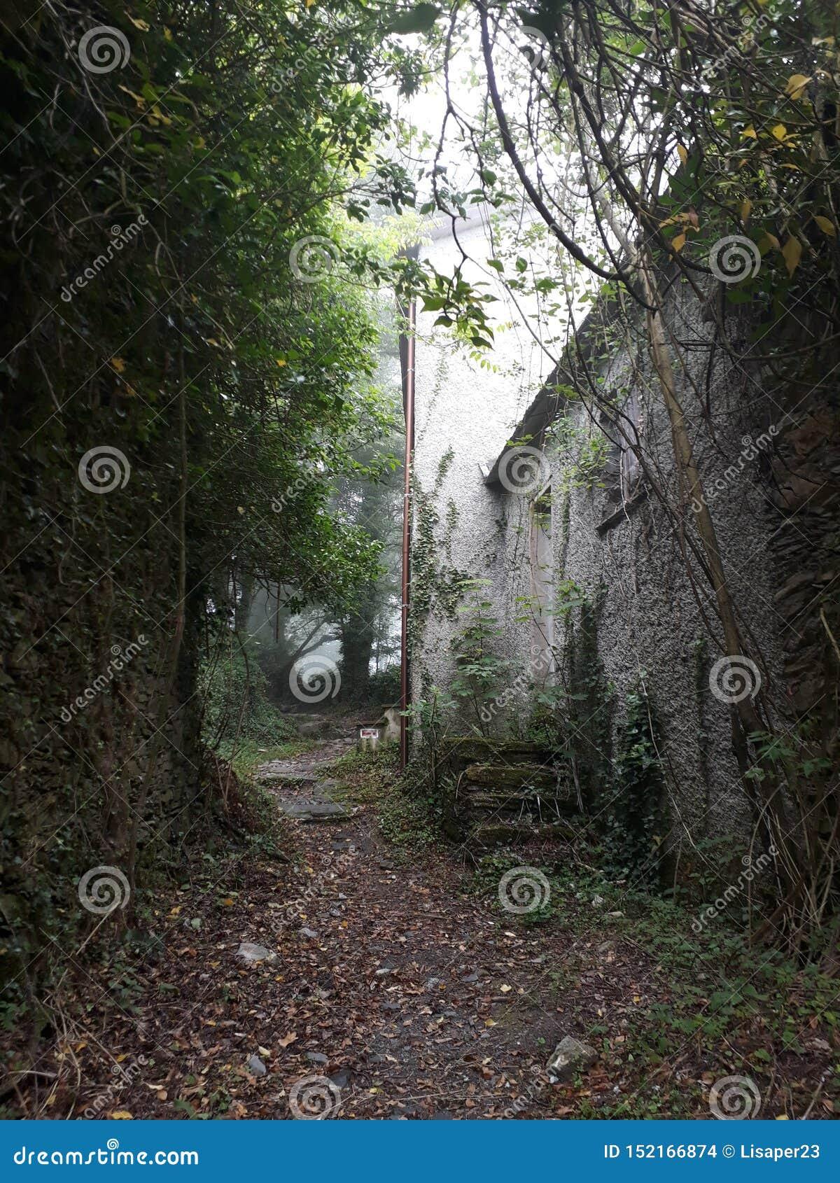 在Fasce山的废墟