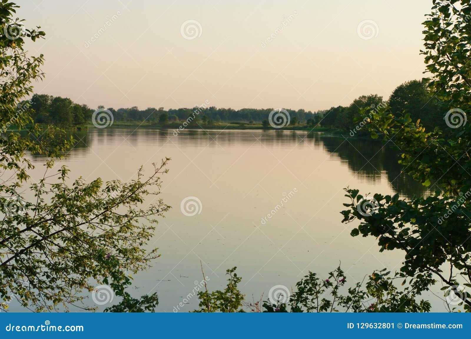 在Klyazma河的洪泛区