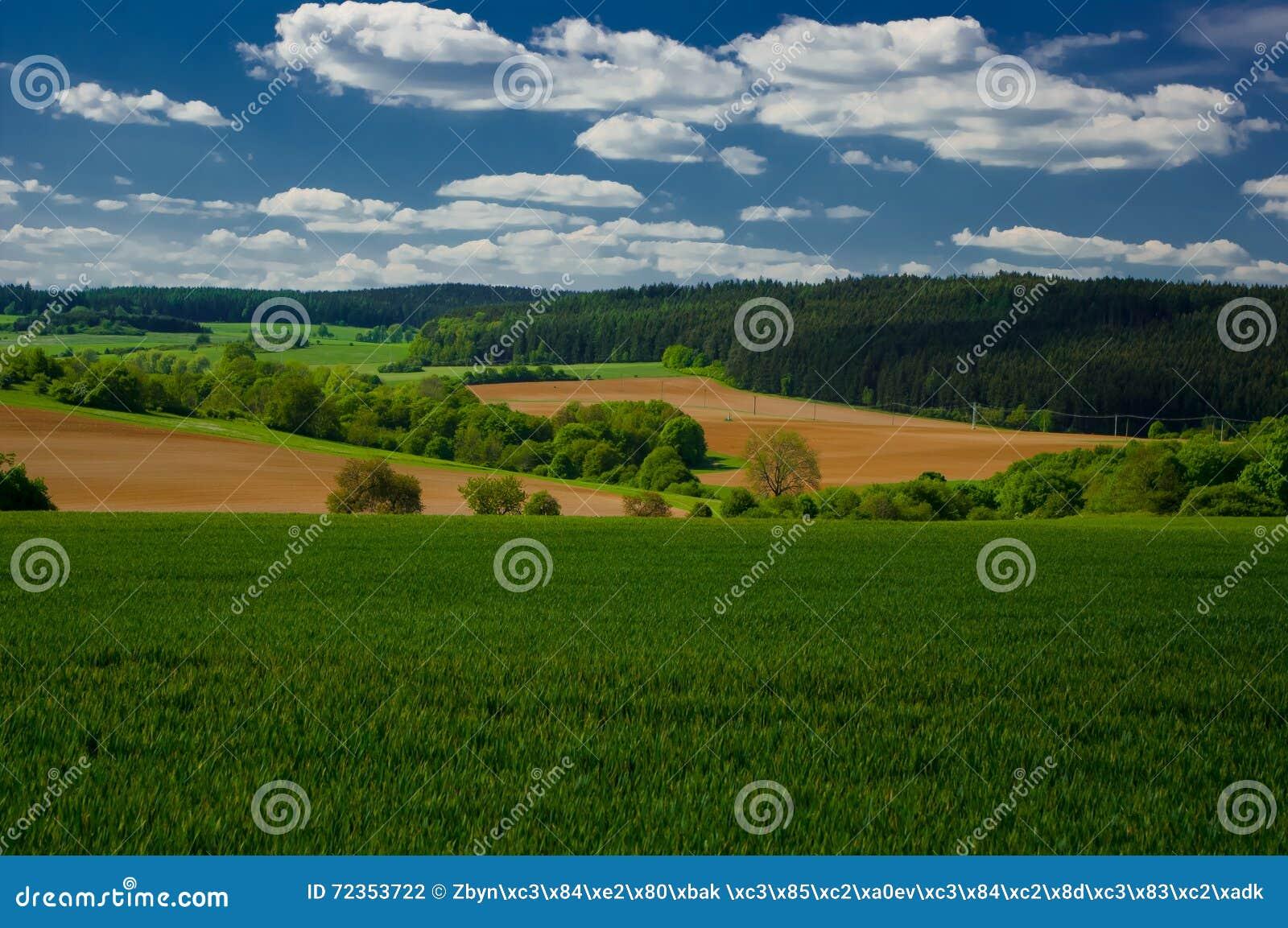 在Moravian石灰岩地区常见的地形的春天风景