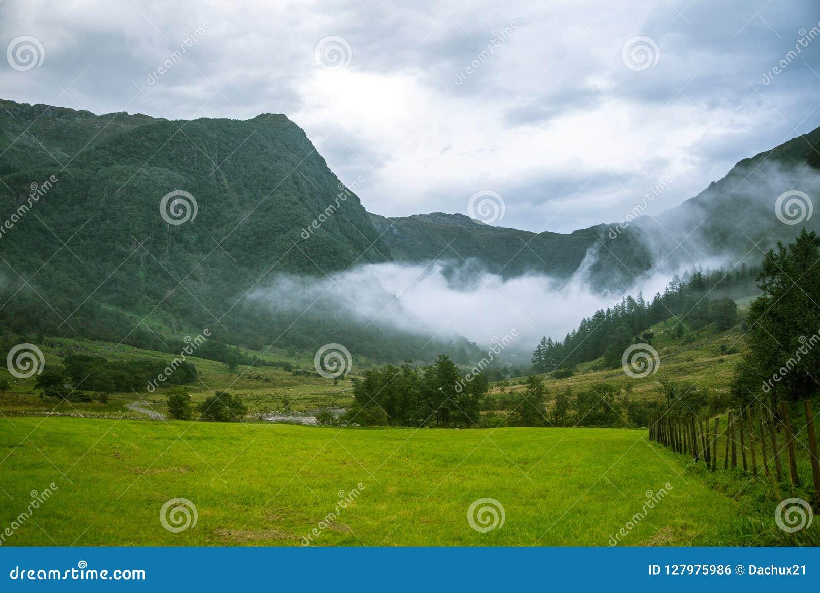 在Rosendal附近的一个美丽的绿色山谷在挪威 秋天风景在福尔格冰川国家公园