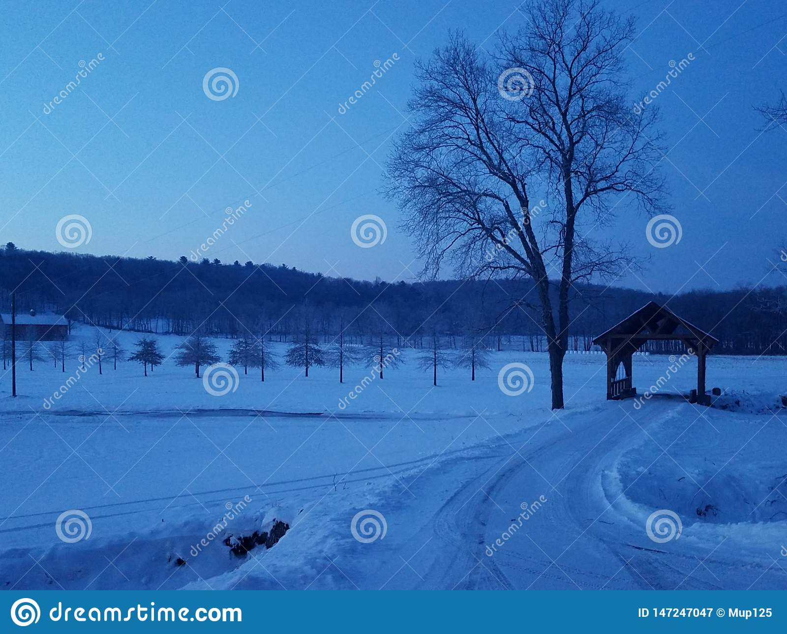 在Skook的冬天早晨