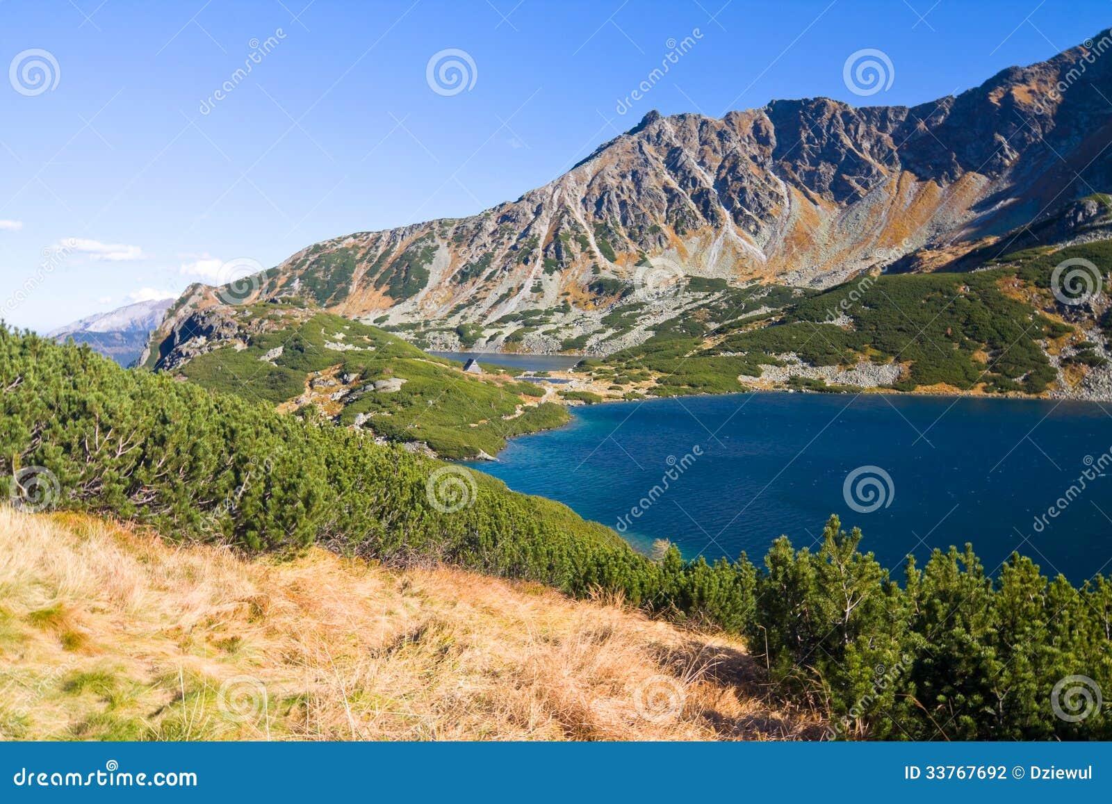 在Tatra山的5个湖谷