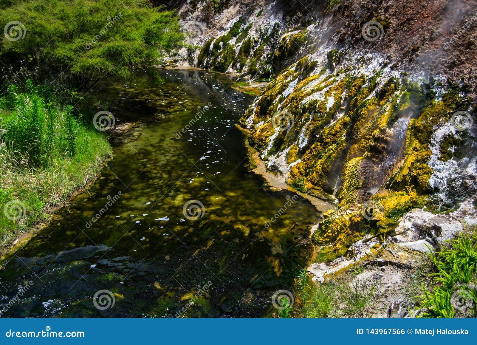 在Waimangu火山的谷的热量水池在罗托路亚,北岛,新西兰