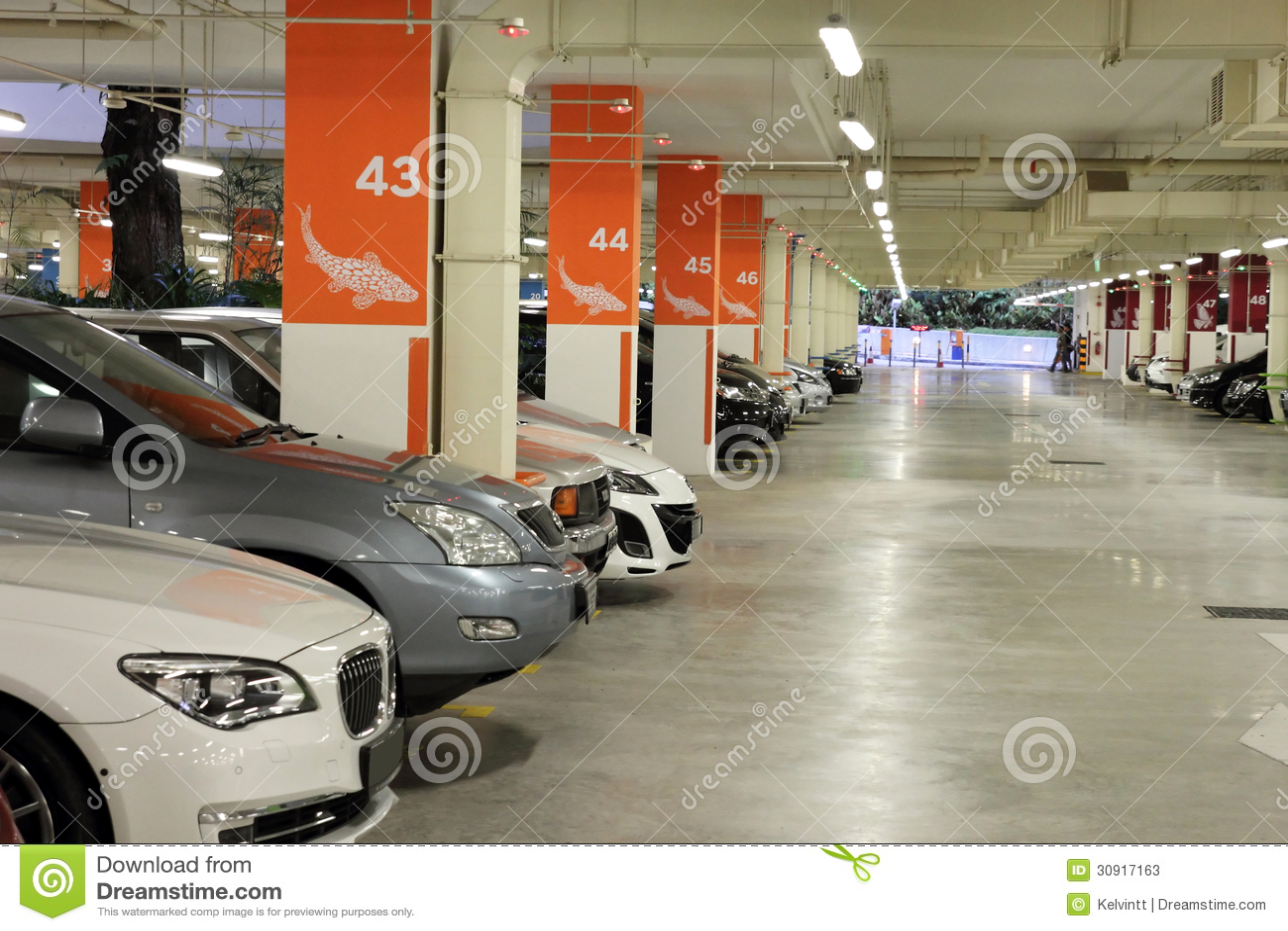 地下室停车场全部