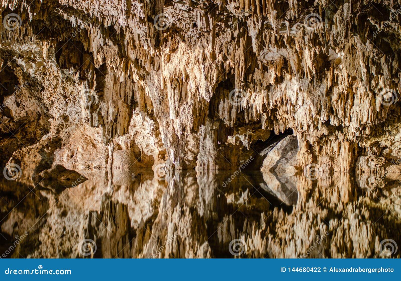 地下洞Cenote Labnaha,里维埃拉玛雅人,墨西哥