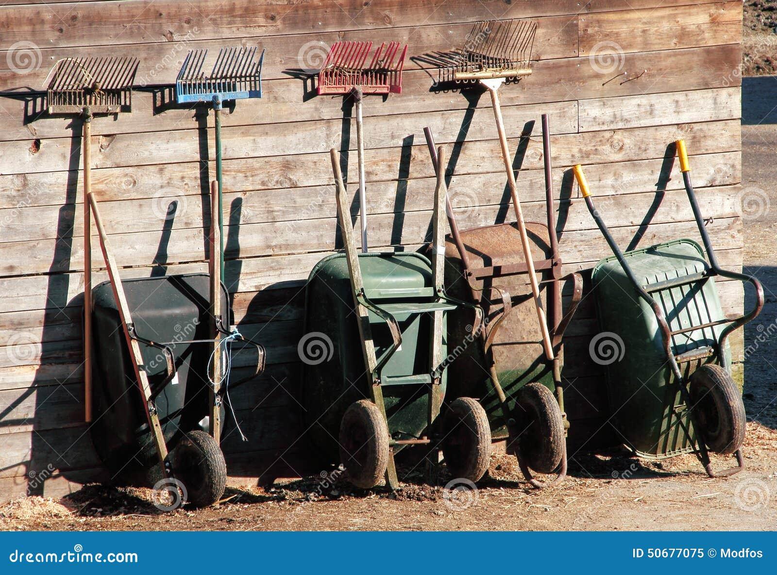 Download 整洁地排队的园艺工具 库存图片. 图片 包括有 组织, 房子, 室外, 工具, 家庭, 庭院, 从事园艺 - 50677075