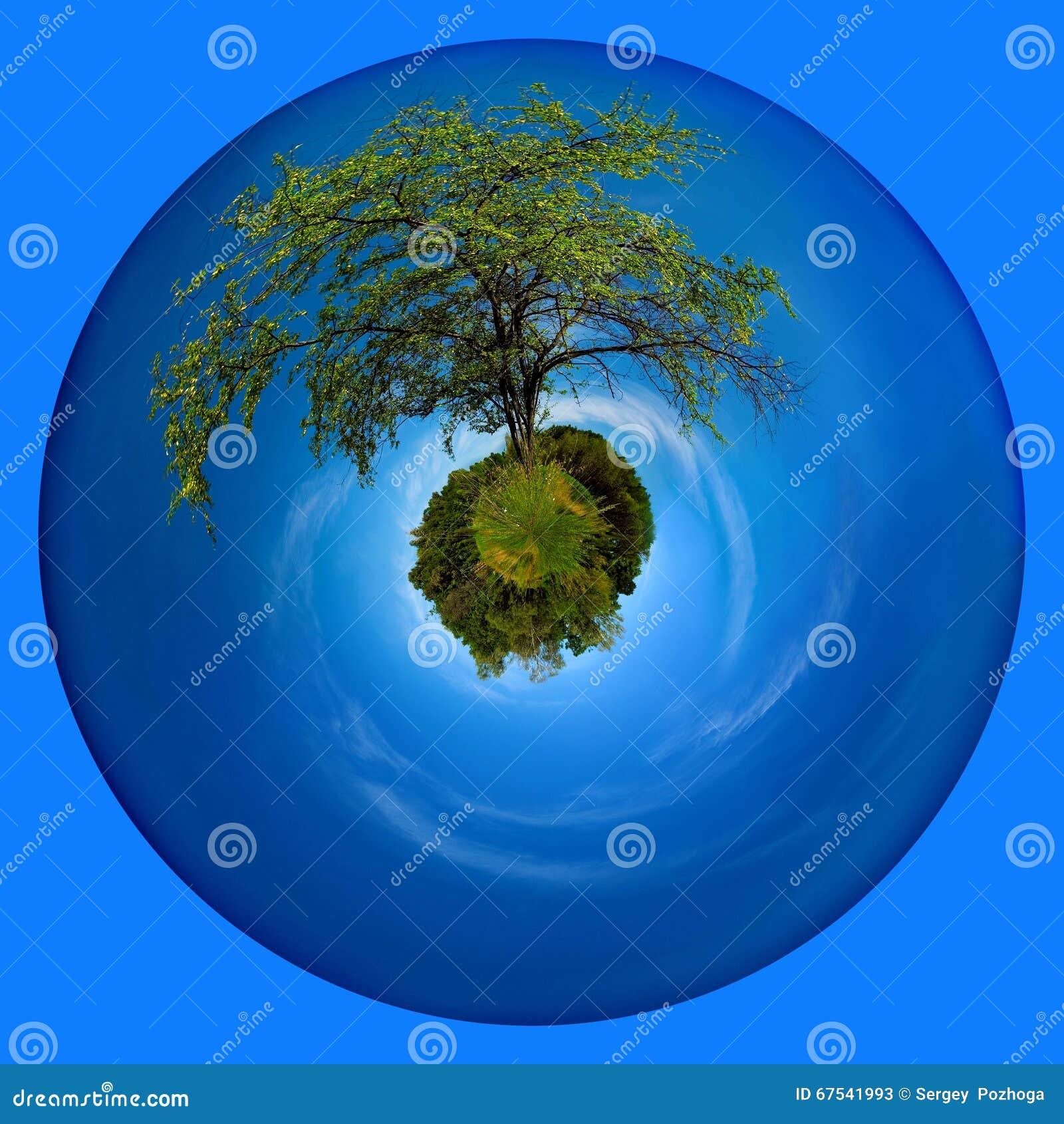 轴线天空和树2014cadcad6地球绘制怎么图片