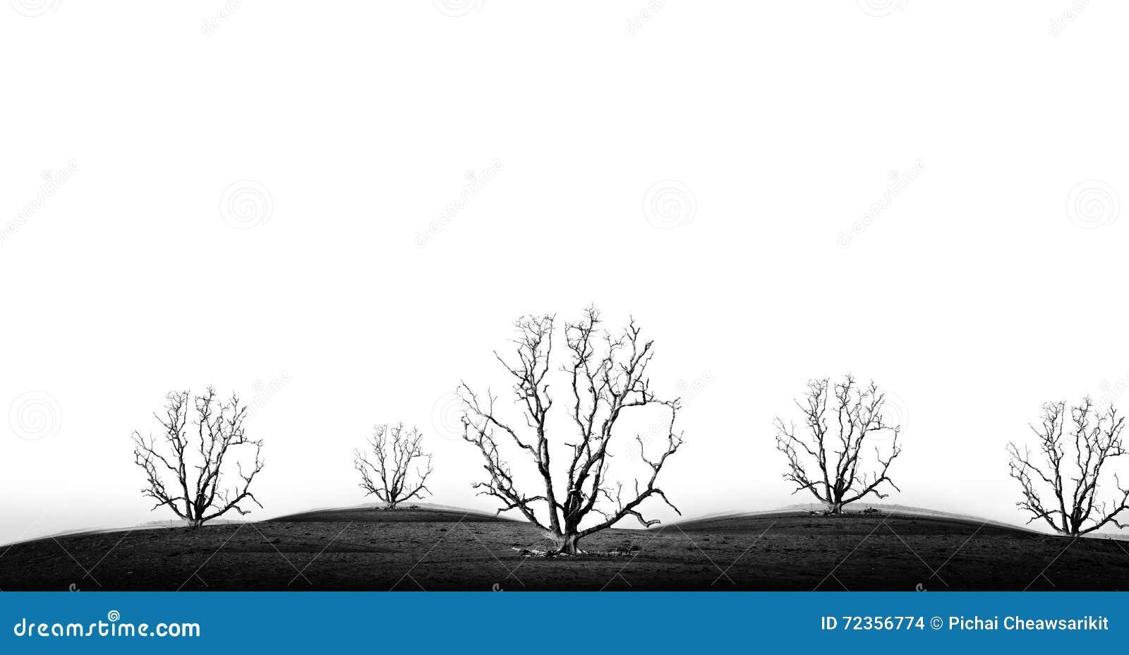 坏环境的概念图片在黑白口气的