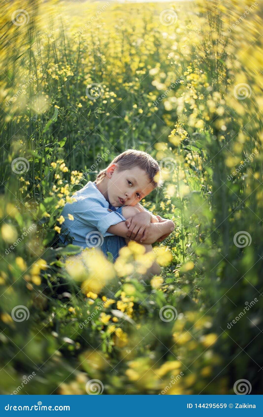 坐在高草,扶植的面孔用手和看照相机的不满意的学龄前儿童男孩