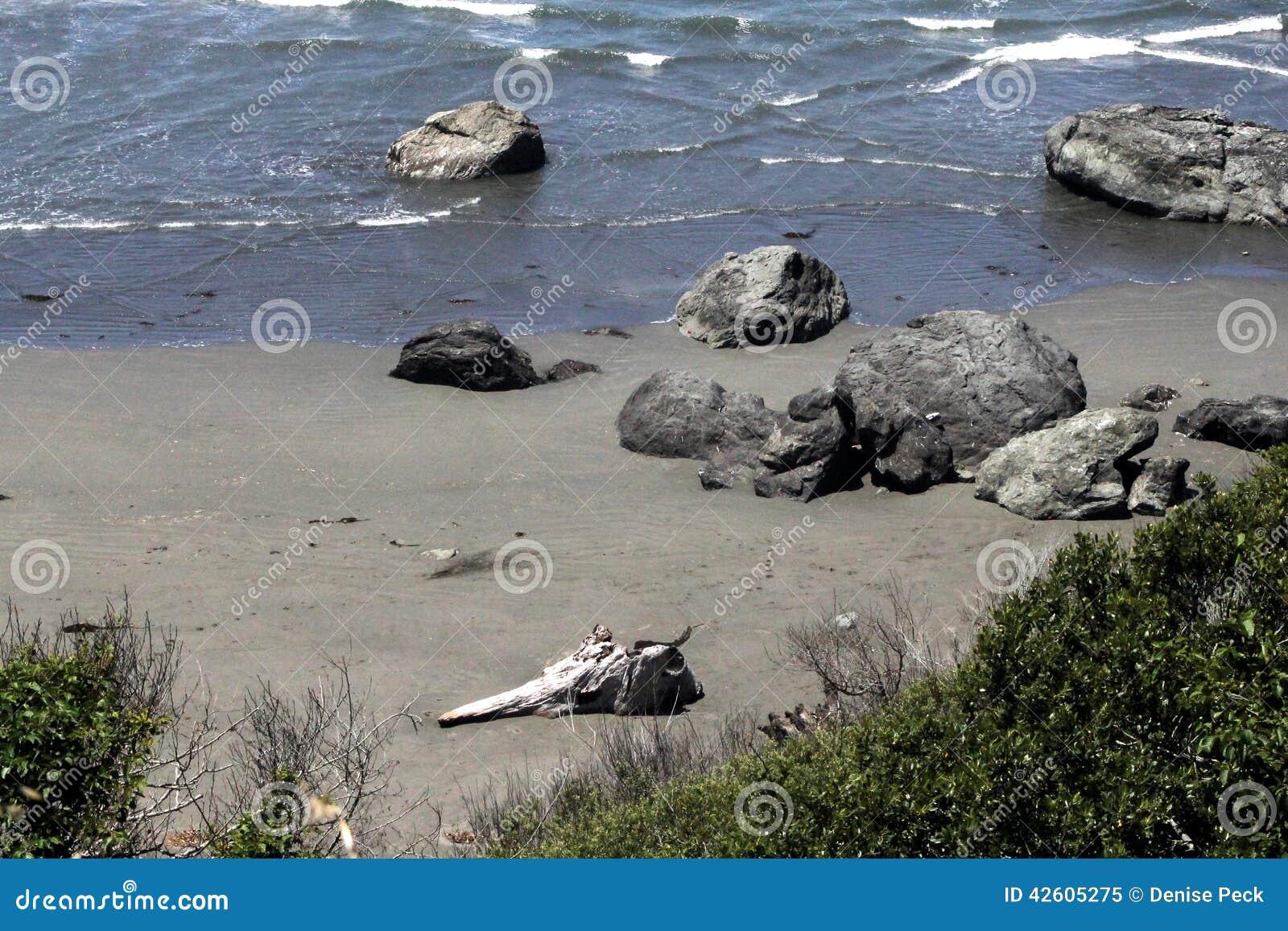 坚固性海岸4