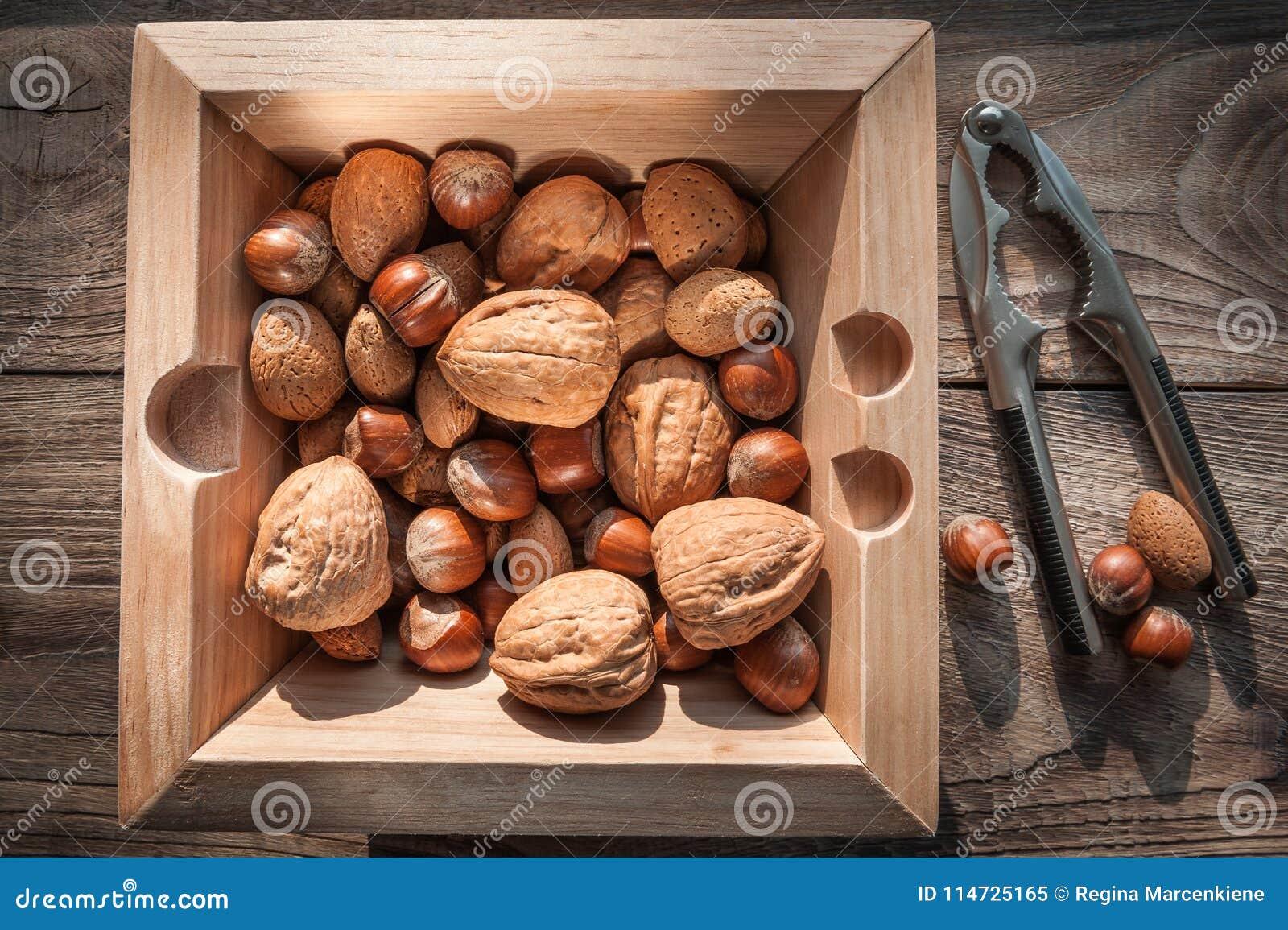 坚果品种有胡桃钳的在与金属胡桃钳的木背景