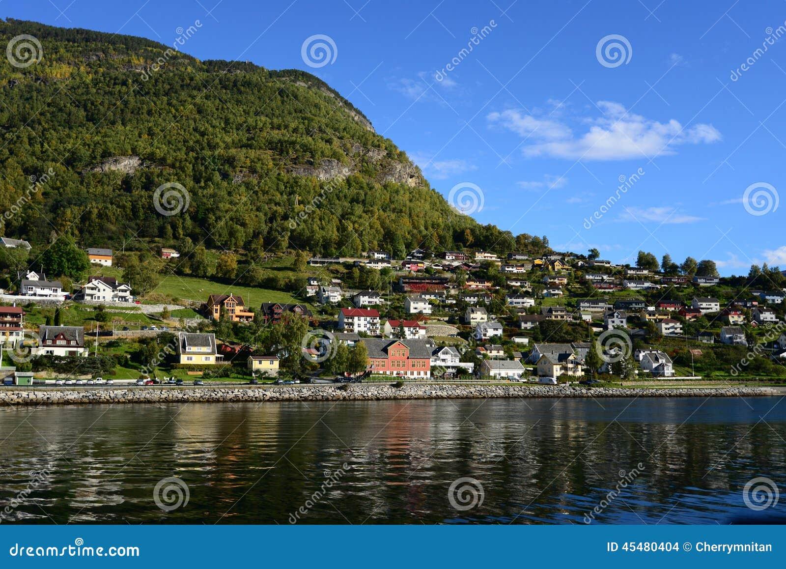 坚果壳Gudvangen的挪威