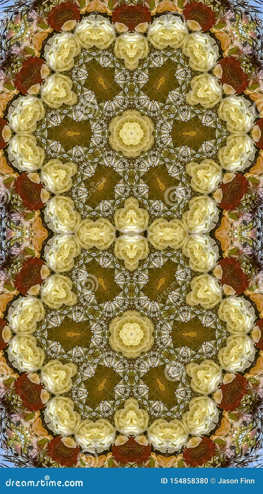 垂直的在圆安排的框架双重六角花在婚礼在蓝色背景的加利福尼亚