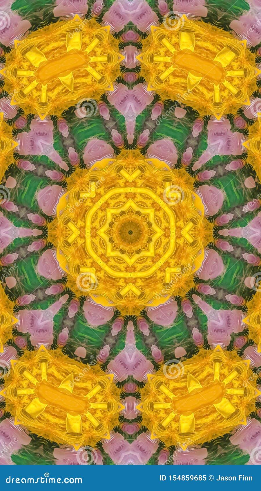 垂直的羽毛是五颜六色的并且看起来象花