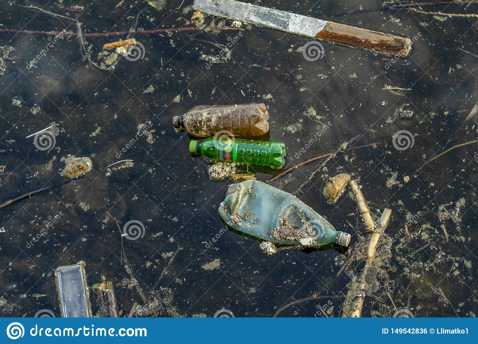 垃圾在水中 一个被污染的池塘的照片