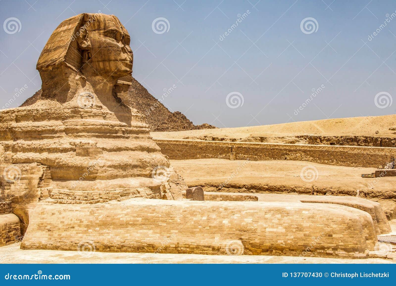 埃及伟大的狮身人面象充分的身体画象头,有吉萨棉背景埃及金字塔的空以没人 复制空间