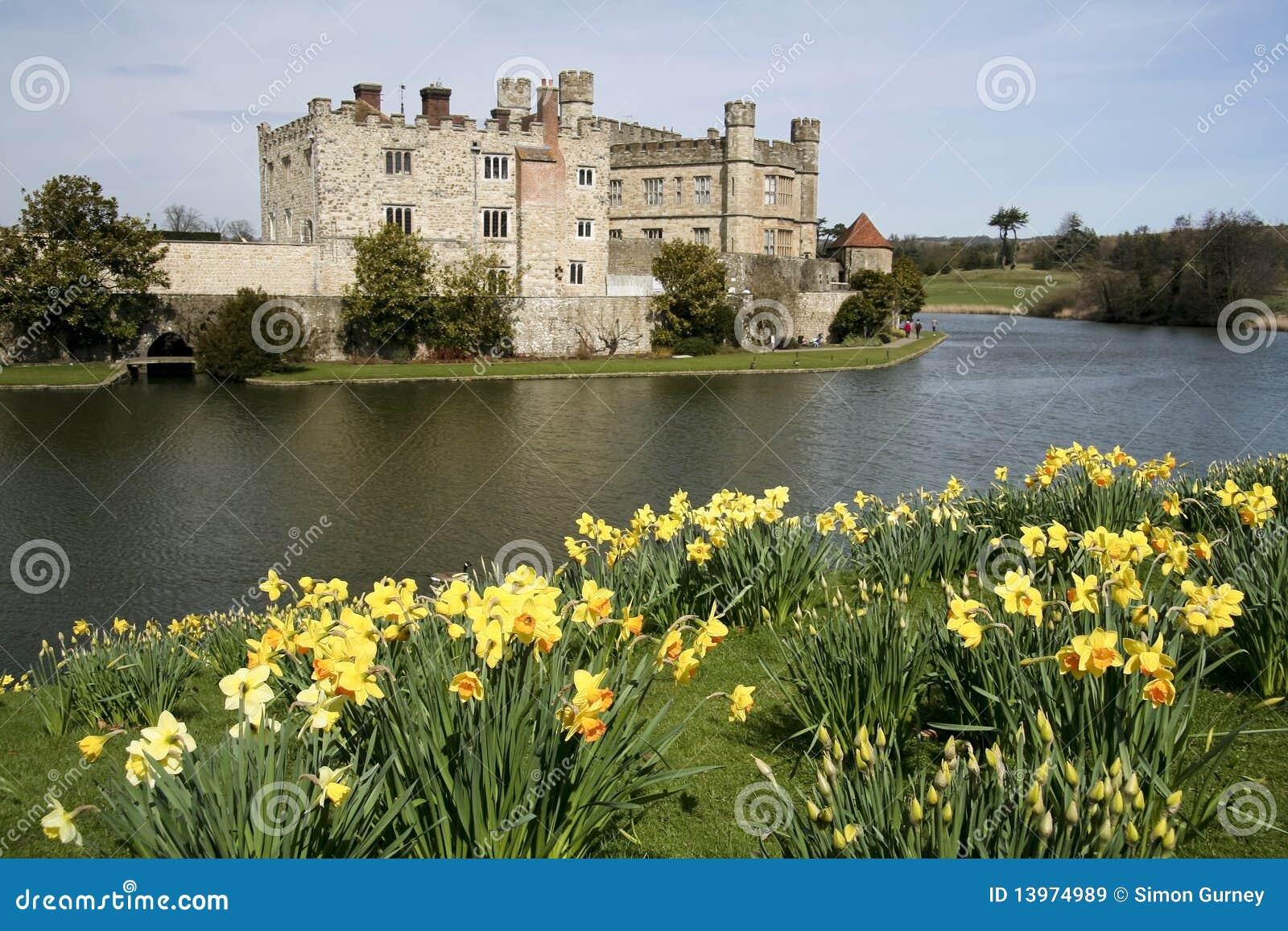 城堡黄水仙肯特利兹春天