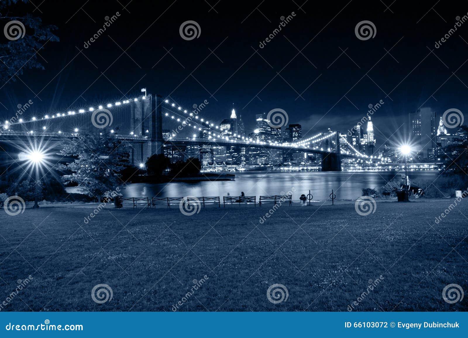城市新的晚上约克 从布鲁克林公园的看法