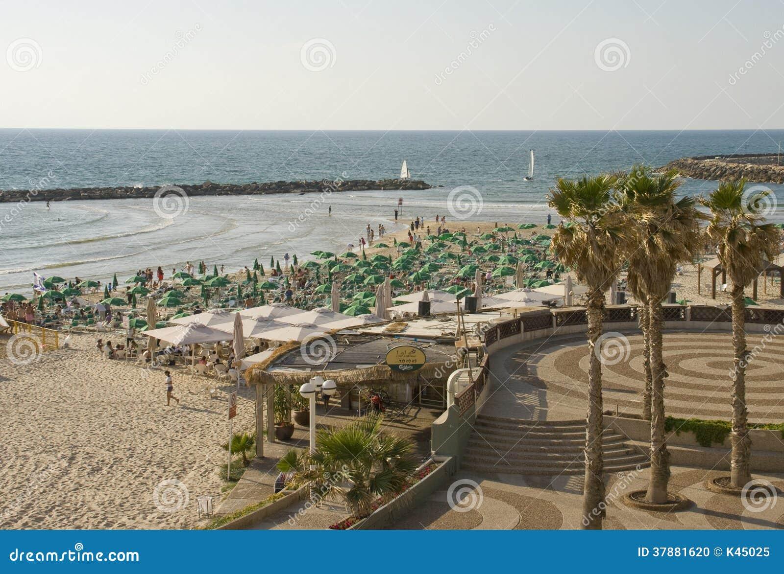城市海滩在市特拉唯夫以色列