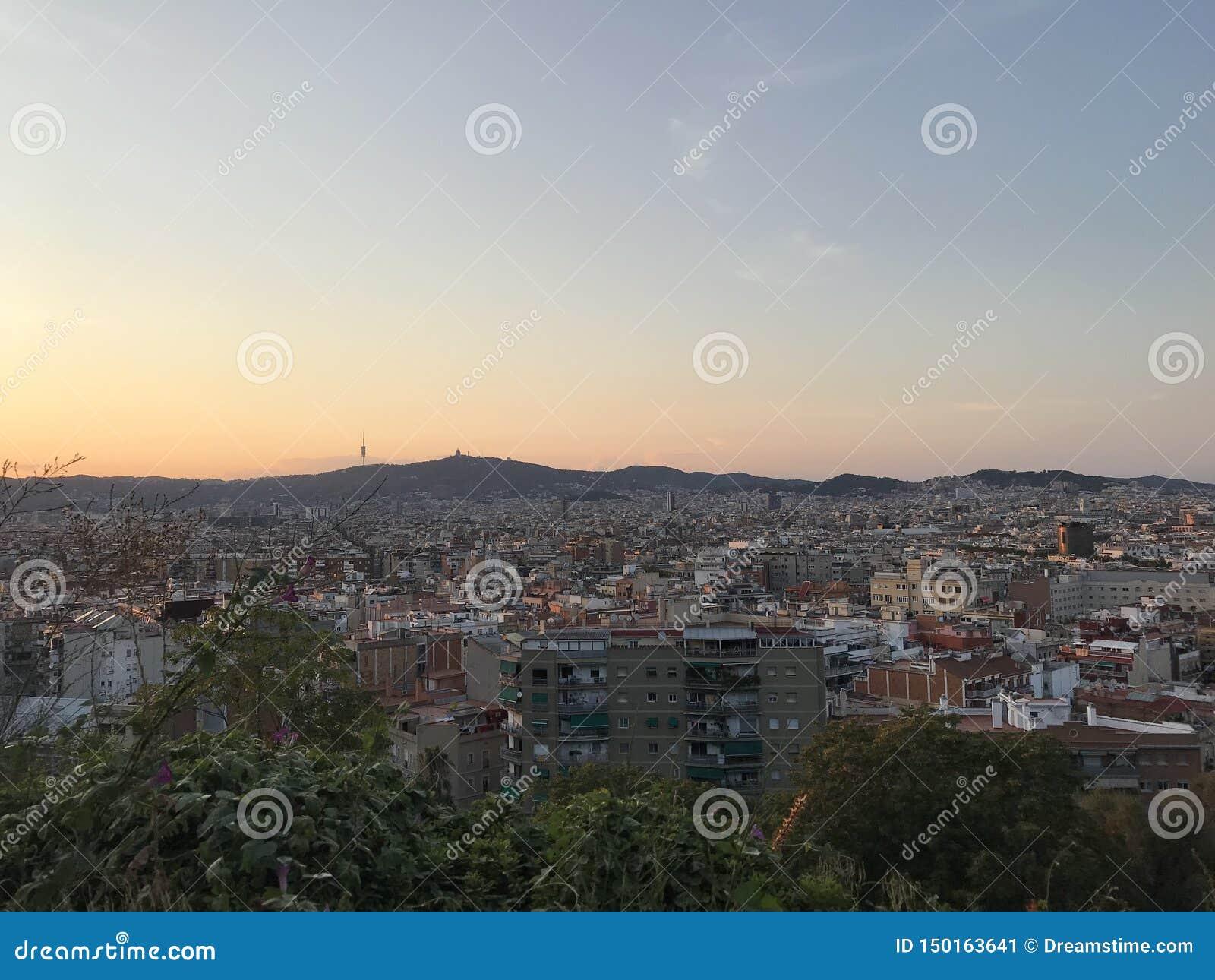 城市的全景从Montjuic,巴塞罗那,西班牙,欧洲的,