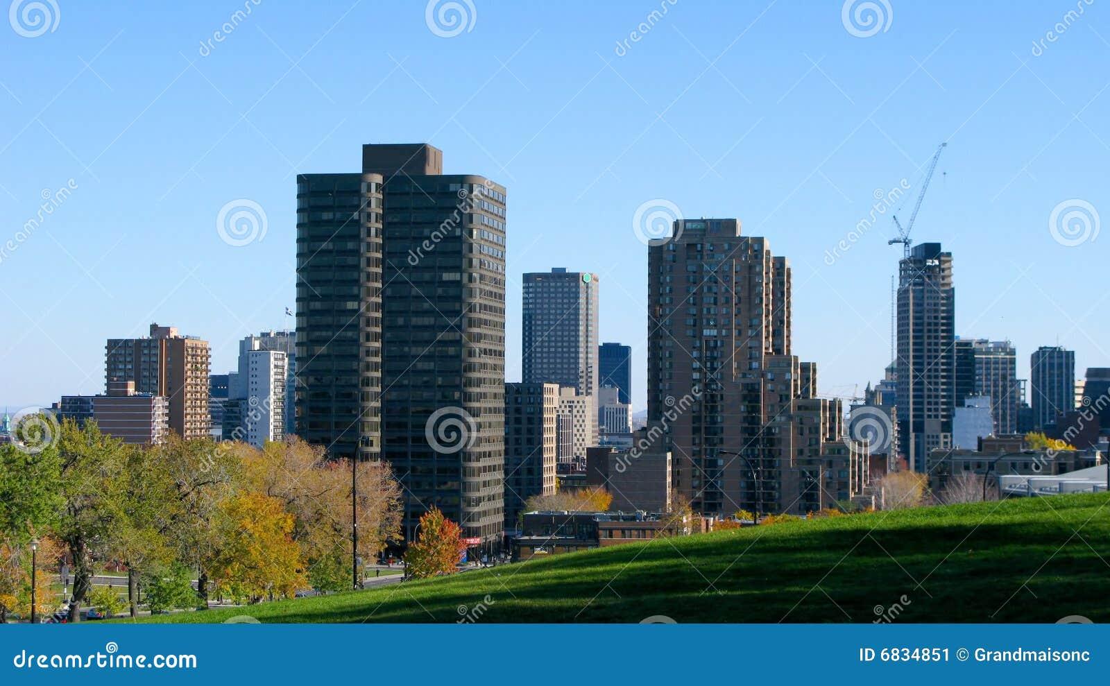 城市蒙特利尔地平线
