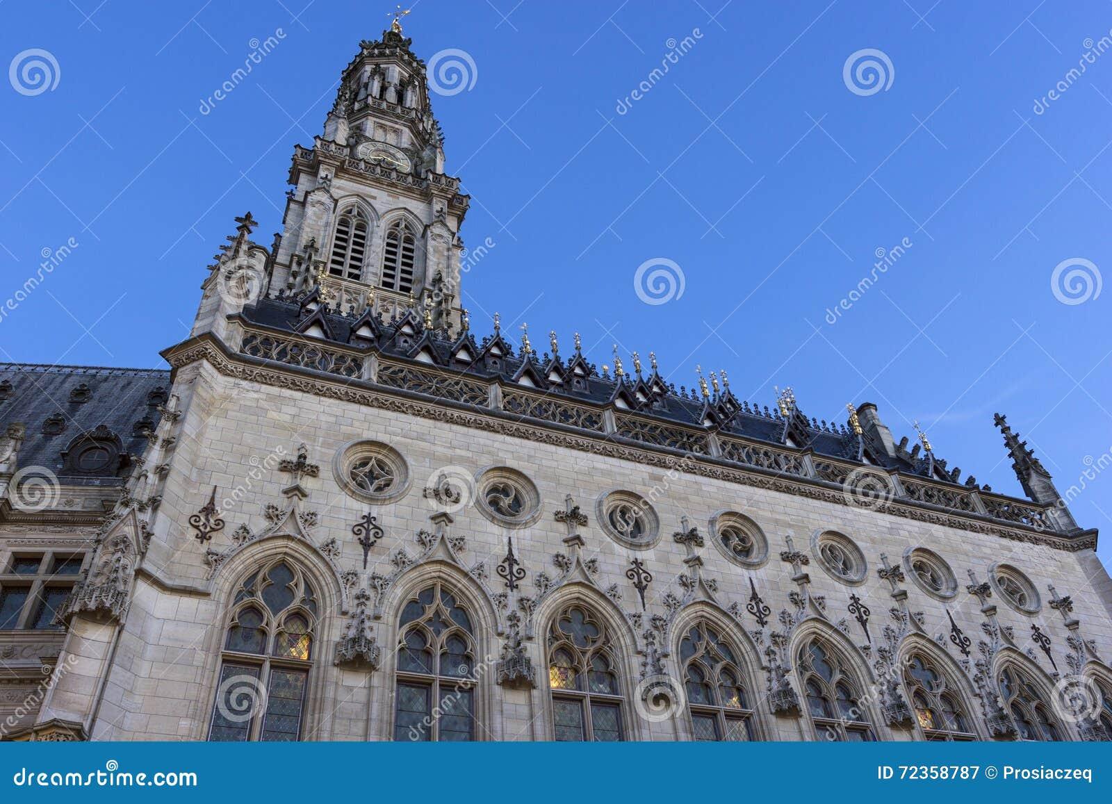 城镇厅和它的在花的钟楼在法国