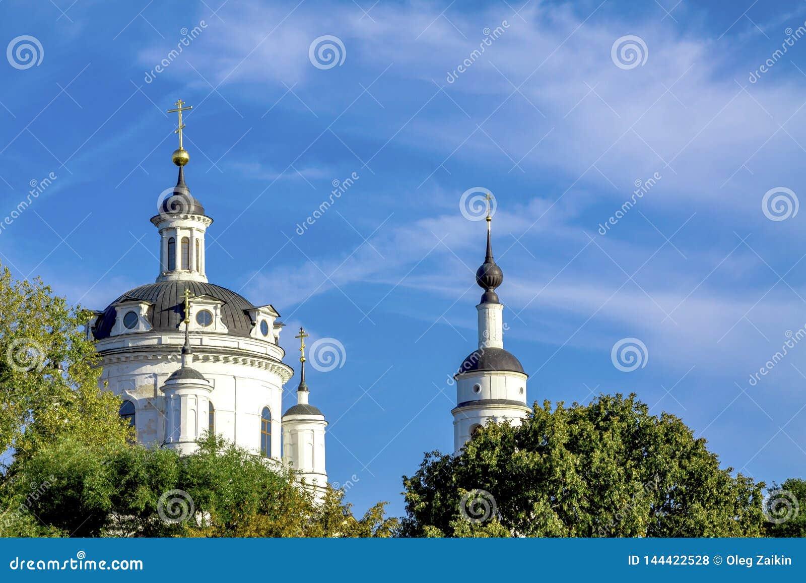 基督教会的圆顶反对天空蔚蓝和绿色树的