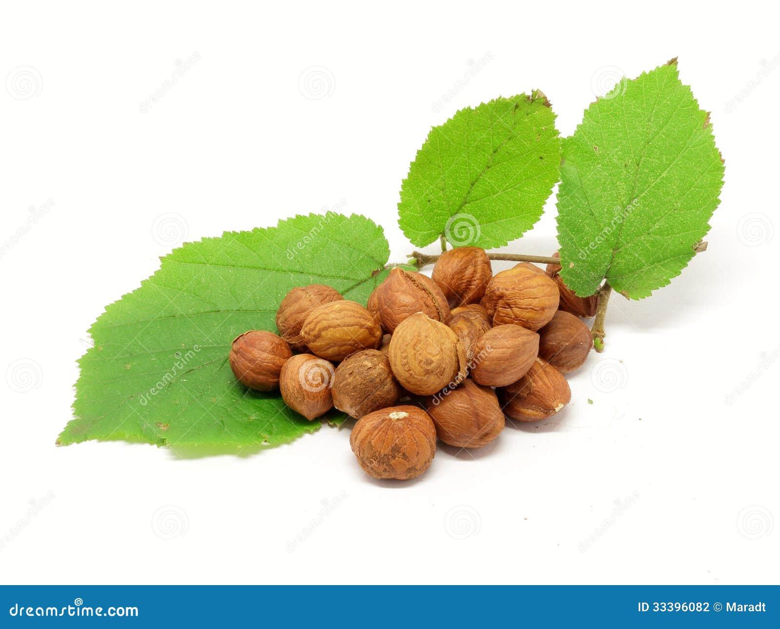 堆榛子和淡褐枝杈