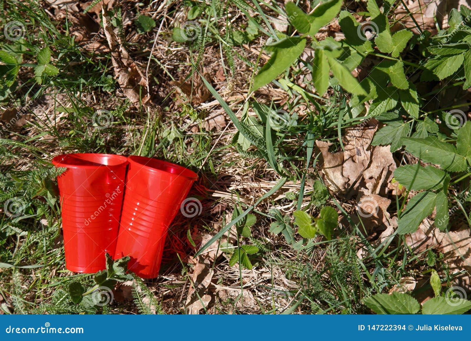 塑料垃圾在森林里