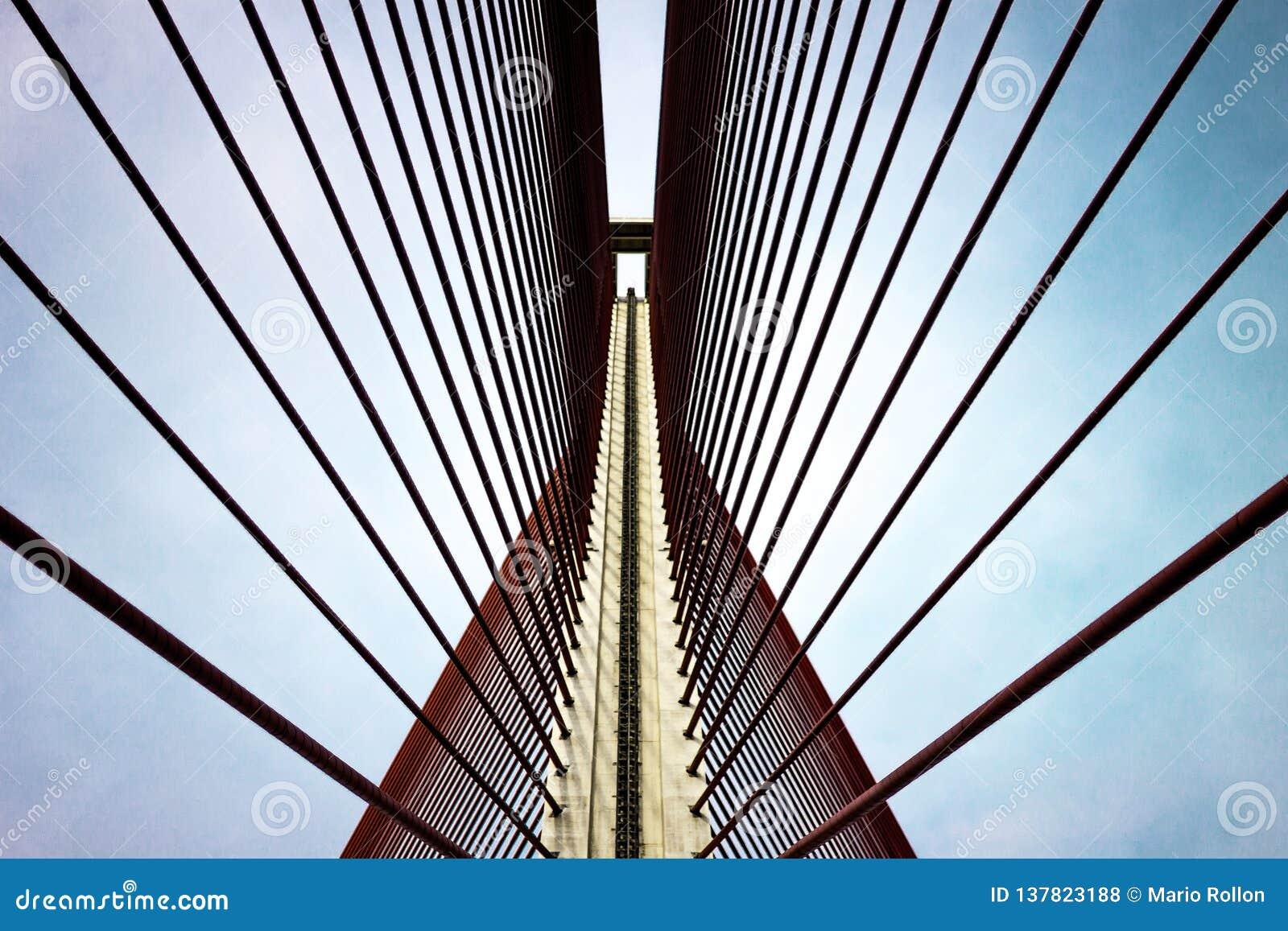 塔拉韦拉德拉雷纳桥梁