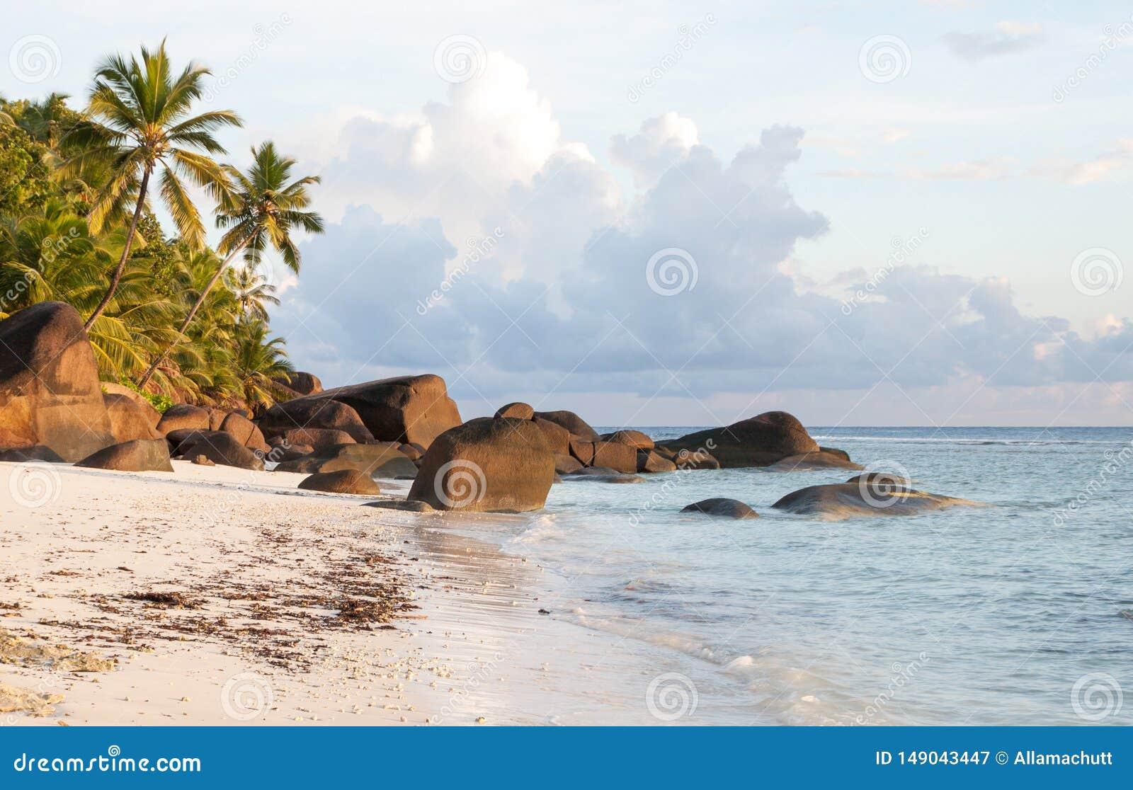 塞舌尔锡卢埃特岛海滩