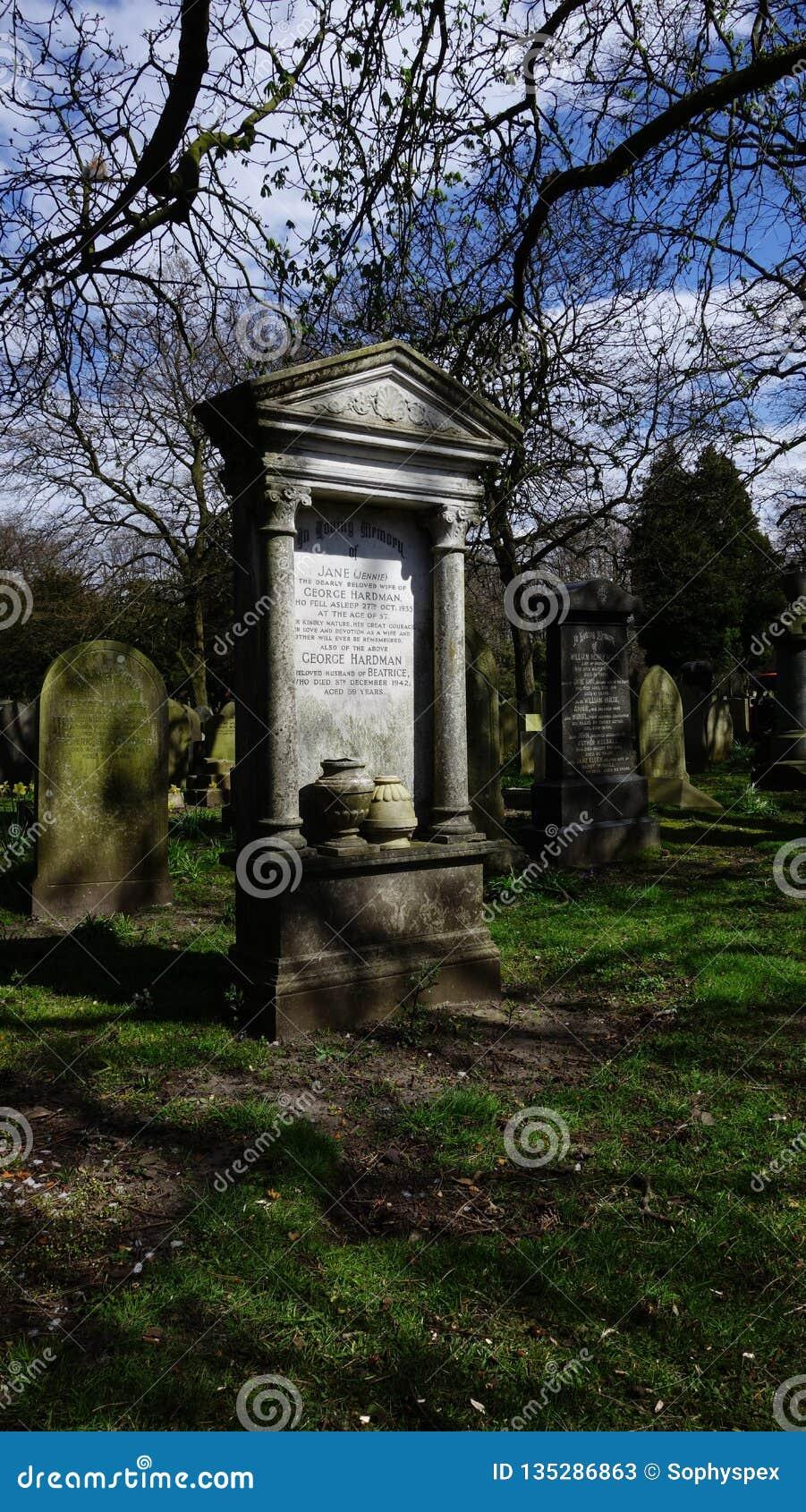 墓石在森林地坟园