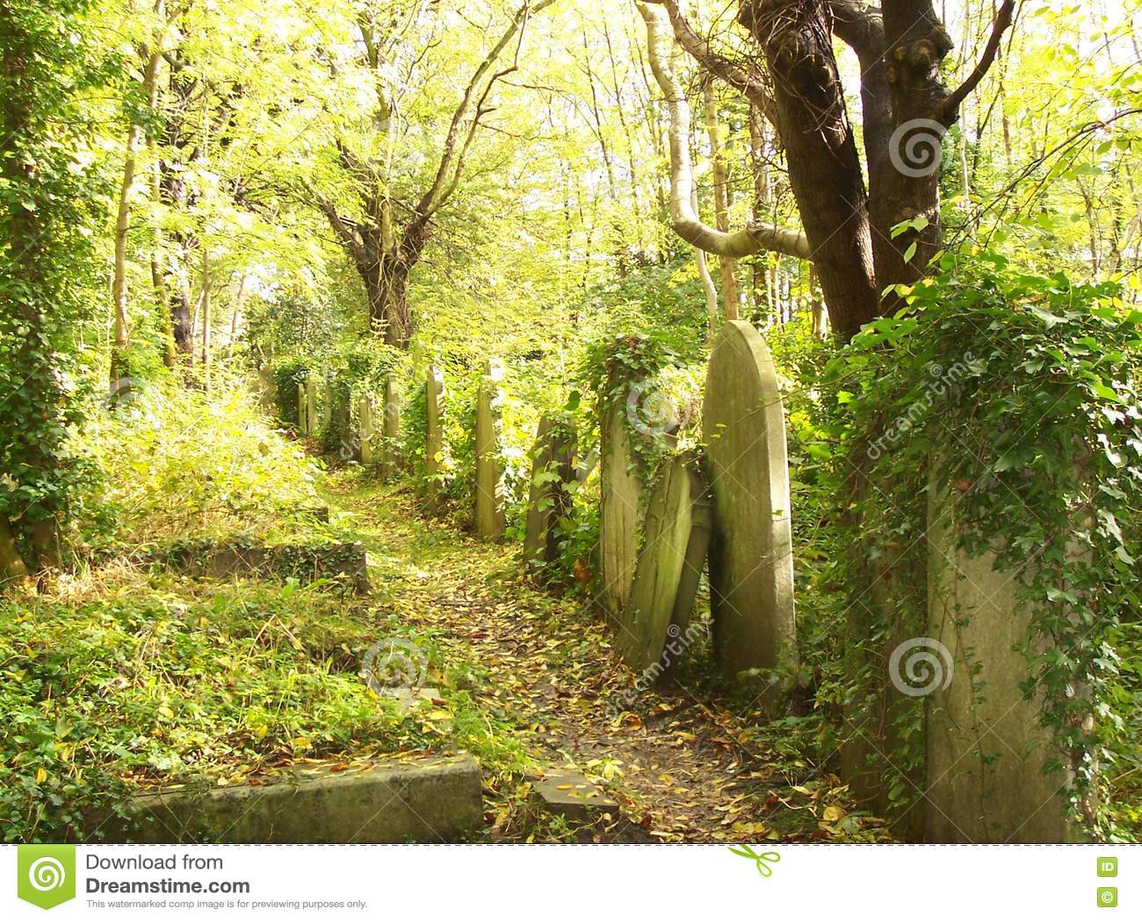 墓碑在Highgate公墓