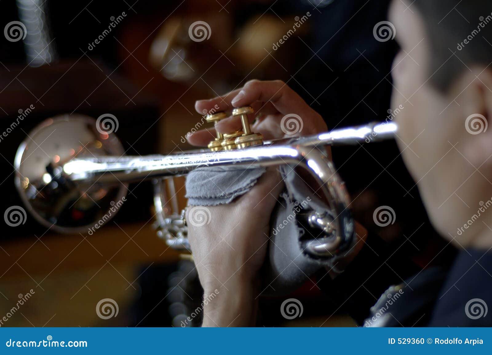 Download 墨西哥流浪乐队 库存照片. 图片 包括有 衣裳, 特写镜头, 性能, 讲西班牙语的美国人, 职业, bambi - 529360