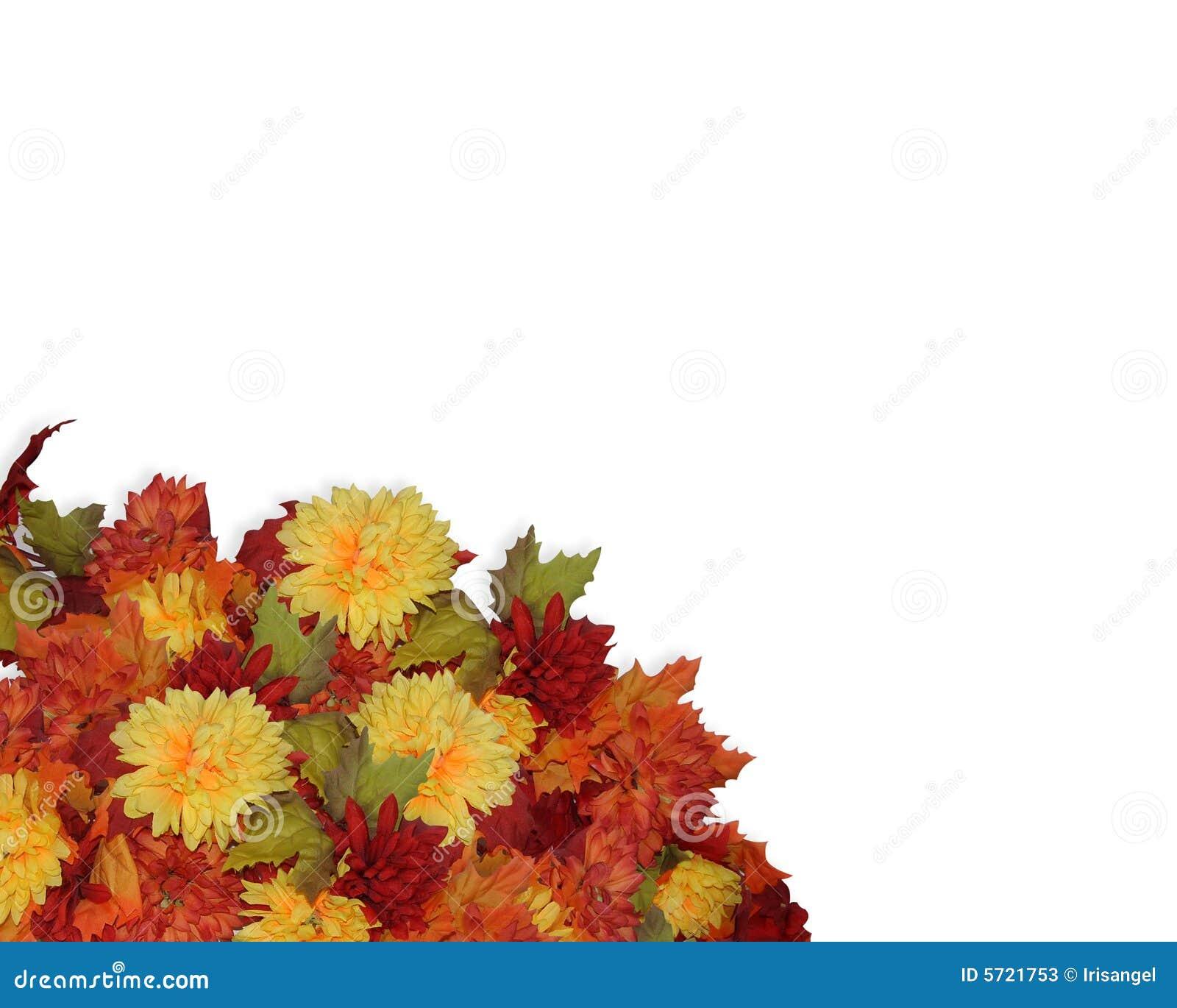 壁角秋天开花感恩