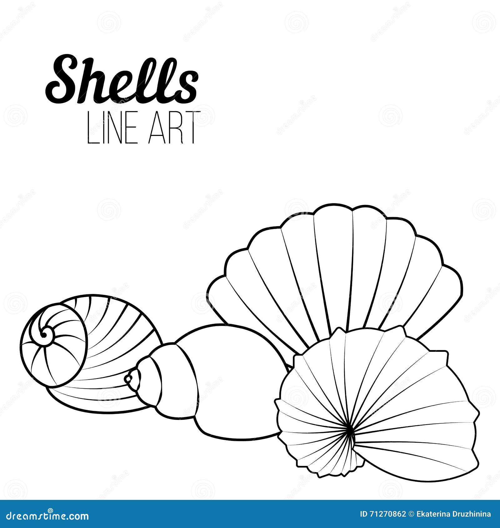 壳,线艺术