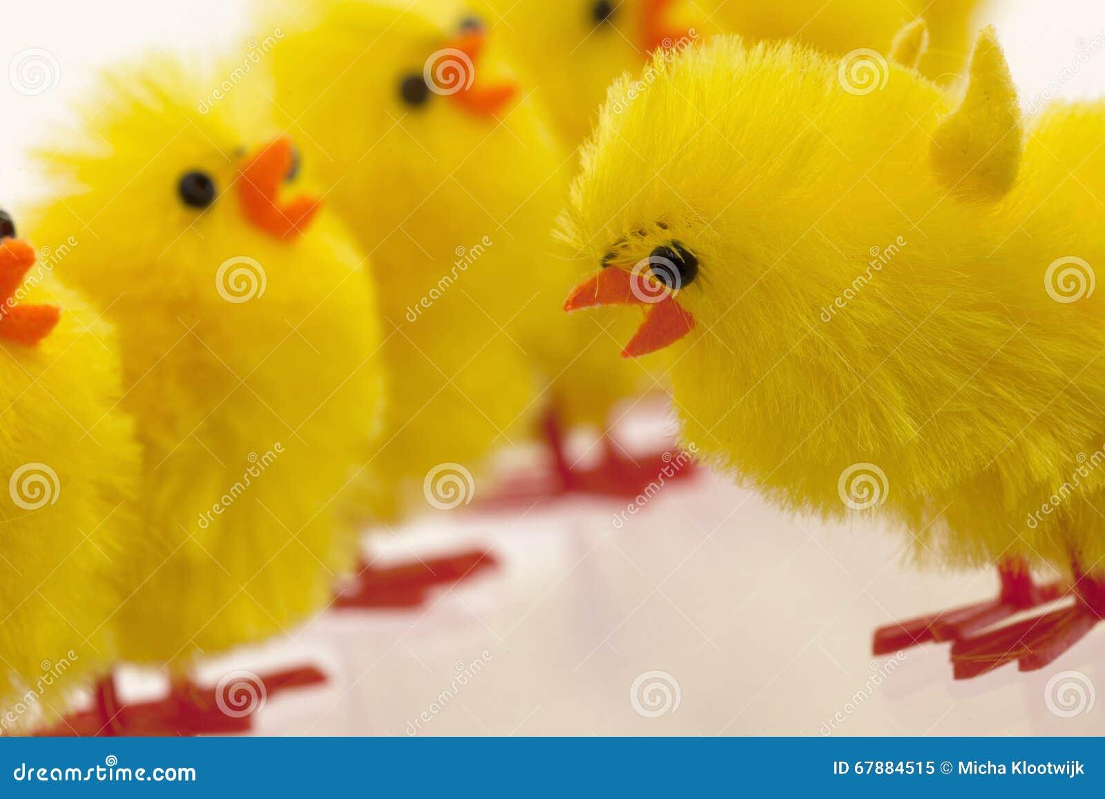 复活节小鸡丰盈,选择聚焦