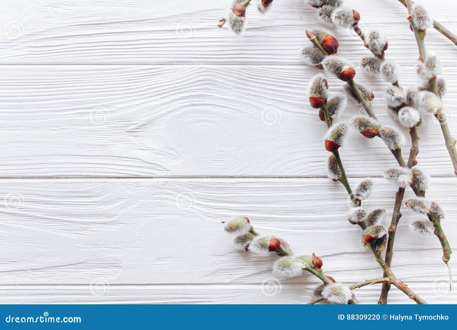 复活节概念,在木背景的分支枝杈